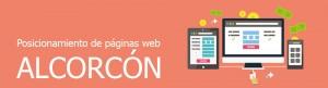 Empresa de posicionamiento de páginas web en Alcorcón