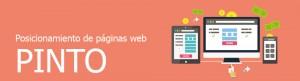 Empresa de posicionamiento de páginas web en Pinto