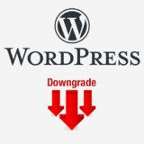 Bajar la versión en WordPress - Downgrade