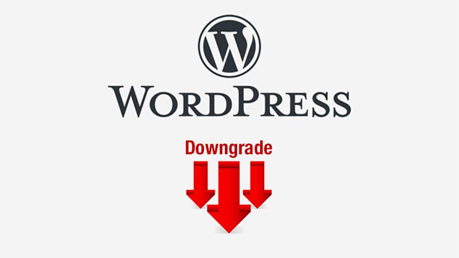 https://faustorios.com/wp-content/uploads/2020/11/bajar-version-wordpress-downgrade.jpg