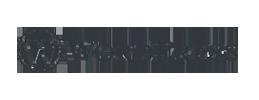diseño-de-paginas-web-Logo-Wordpress